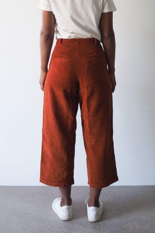 Cord Hose rust